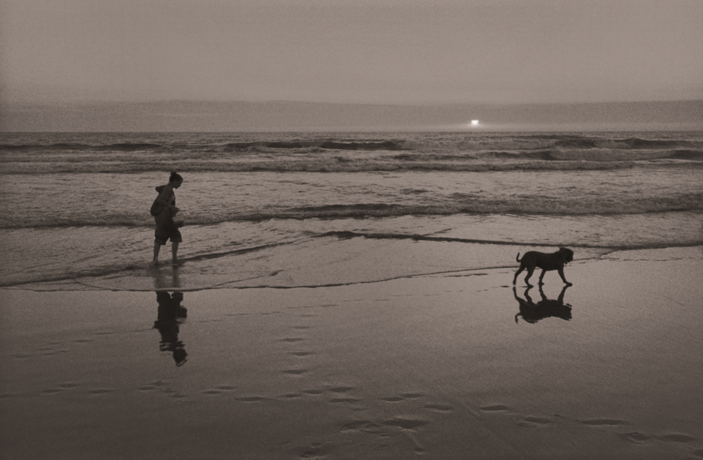Dog Walker at Sunset, Ocean Beach, 2004