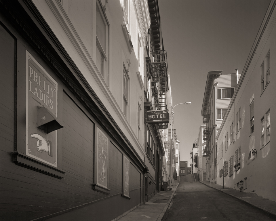 Romolo Alley, 2014