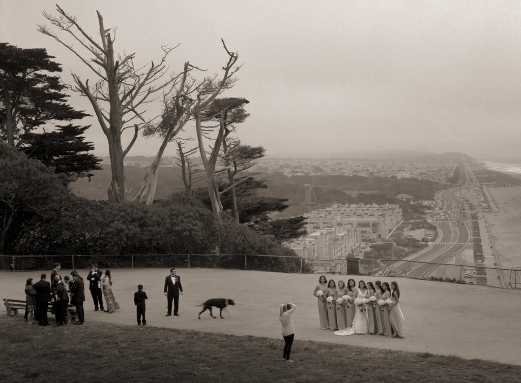 Wedding Party, #3, Sutro Park, 2013